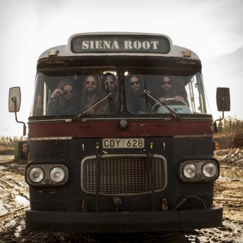 #SienaRoot