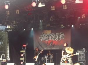 Aardvarks@Rheinaue2015